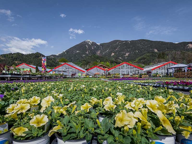 Außenansicht –Gartenbaubetrieb Reinold