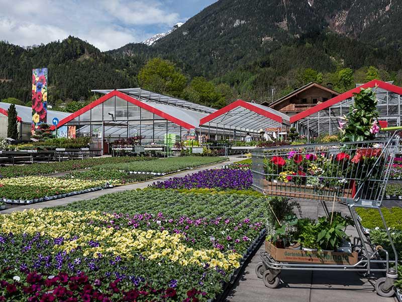 Außenansicht Gartenbaubetrieb Reinold